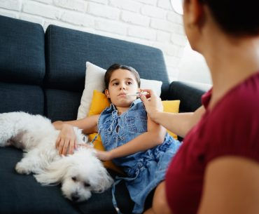 CBD for Canine Influenza